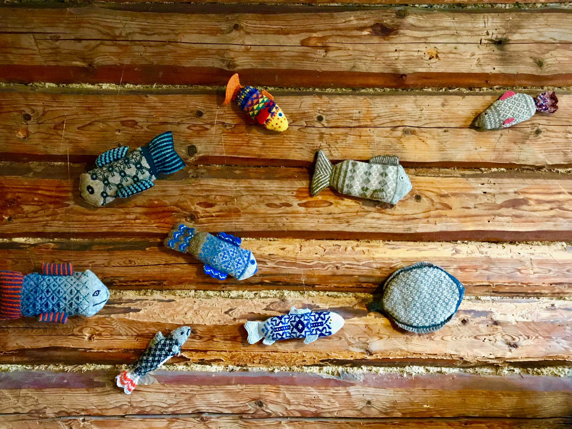 Enchanting Stricken Hai Socken Muster Mold - Decke Stricken Muster ...